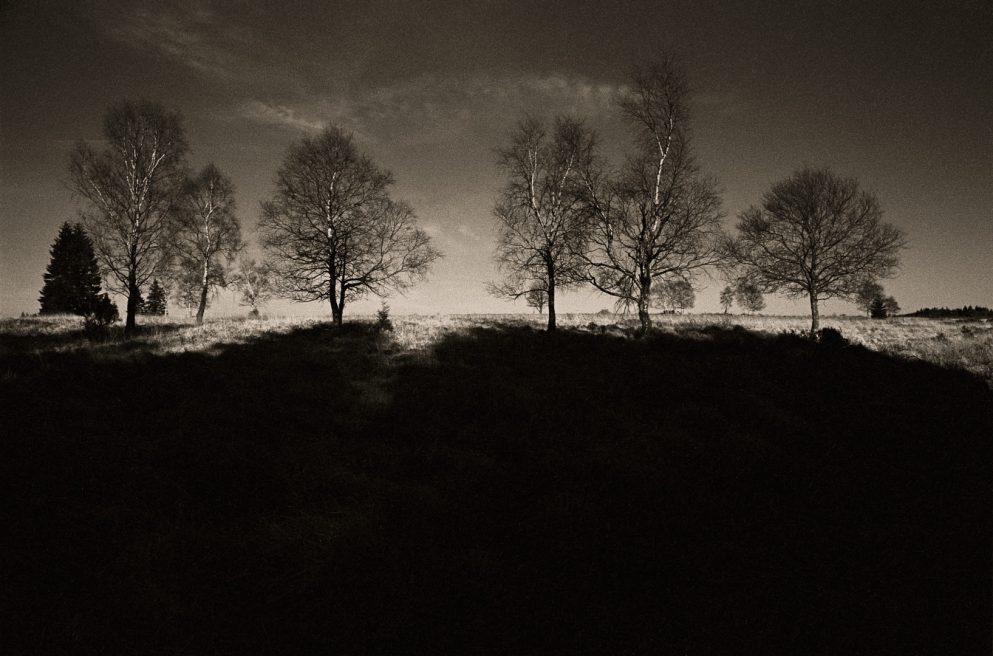 Landscape Hohes Venn